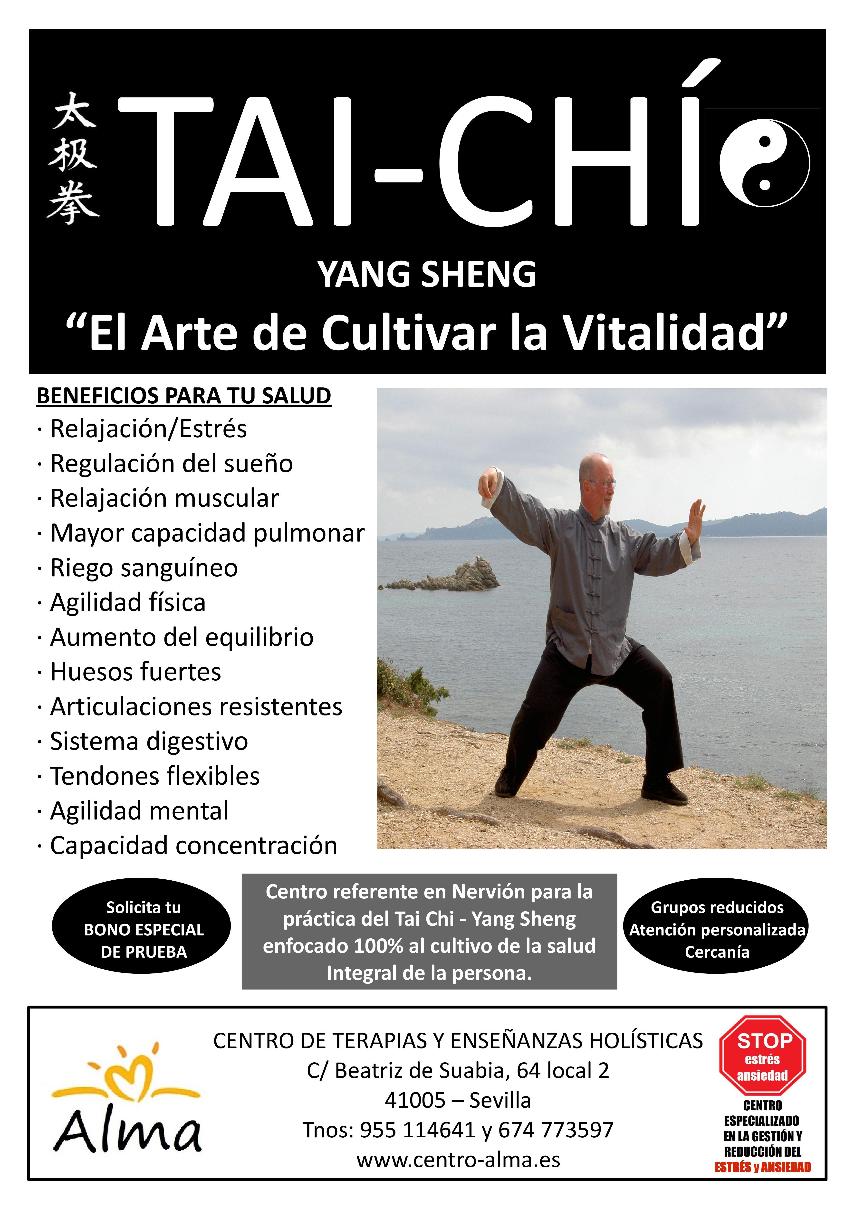 poster taichi